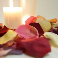 Natural color freeze dried rose petals for decorating.