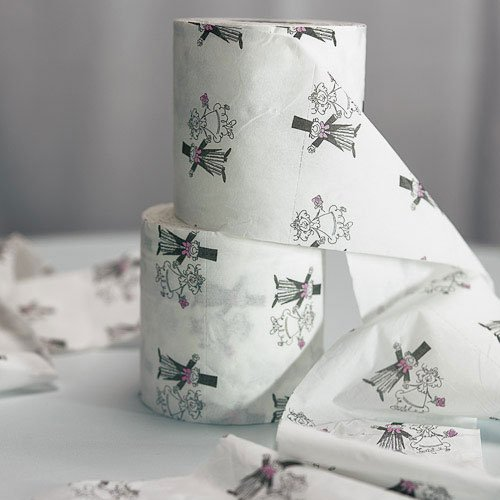 Toilet paper rolls for bridal shower dress game.